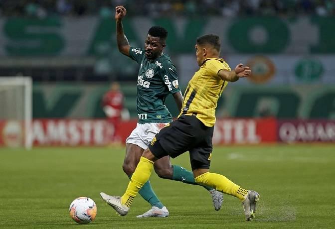 Nhận định, soi kèo Palmeiras vs Bolivar, 05h15 01/10