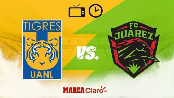 Nhận định, soi kèo Tigres UANL vs Juarez, 08h00 25/10