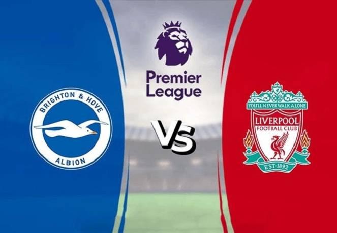 Nhận định, soi kèo Brighton vs Liverpool, 19h30 28/11