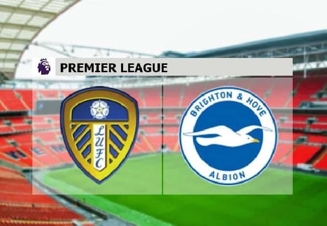 Soi kèo từ sàn châu Á Leeds Utd vs Brighton, 22h00 16/01