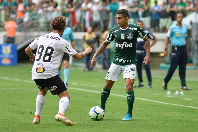 Nhận định, soi kèo Atletico Mineiro vs Palmeiras, 07h30 26/02