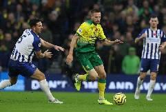 Nhận định, soi kèo Norwich vs Brighton, 18h30 04/7