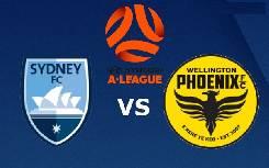 Nhận định, soi kèo Sydney FC vs Wellington, 16h30 17/7