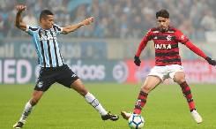 Nhận định, soi kèo Flamengo vs Gremio, 05h15 20/08
