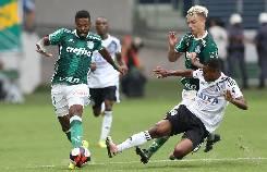 Nhận định, soi kèo Palmeiras vs Tigre, 07h30 22/10