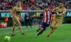 Nhận định, soi kèo Pumas UNAM vs Guadalajara Chivas, 08h00 01/11