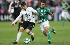 Nhận định, soi kèo Bahia vs Palmeiras, 7h30 ngày 13/10